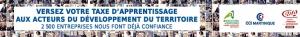 bannière-taxe-728x90---2019