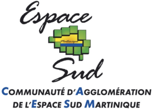 45_1024_Logo_Espace_Sud_large