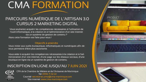 CMA Martinique Marketing digital